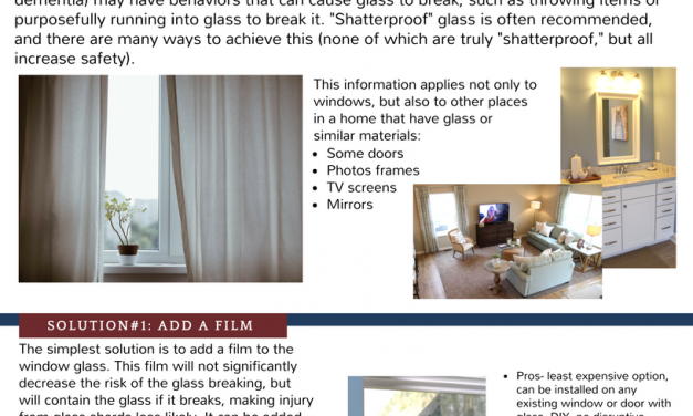 "All About ""Shatterproof"" Windows"