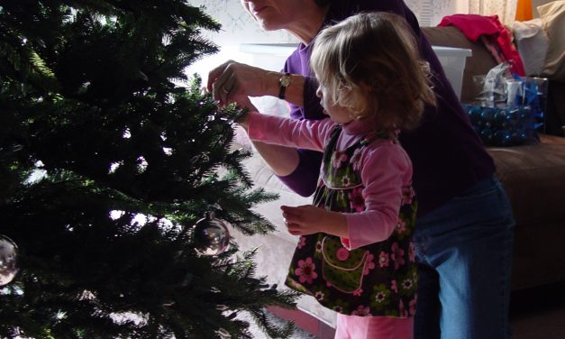 Visitable Homes for the Holidays: Developmental Disabilities