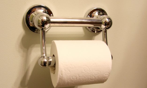 Toilet Paper Holders- Problems and Solutions